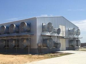 pig farming ventilation system