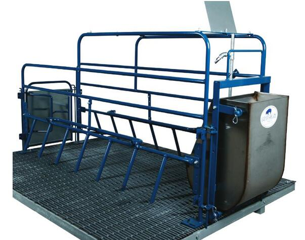 A pig farrowing crate
