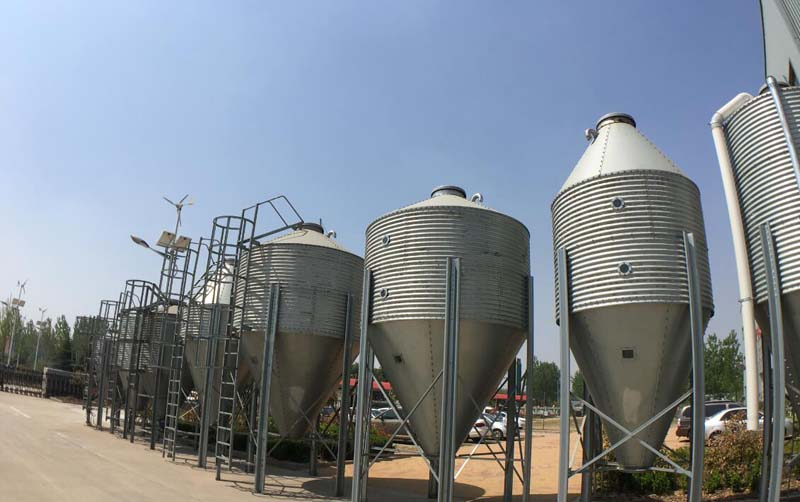 pig feeding silo factory price