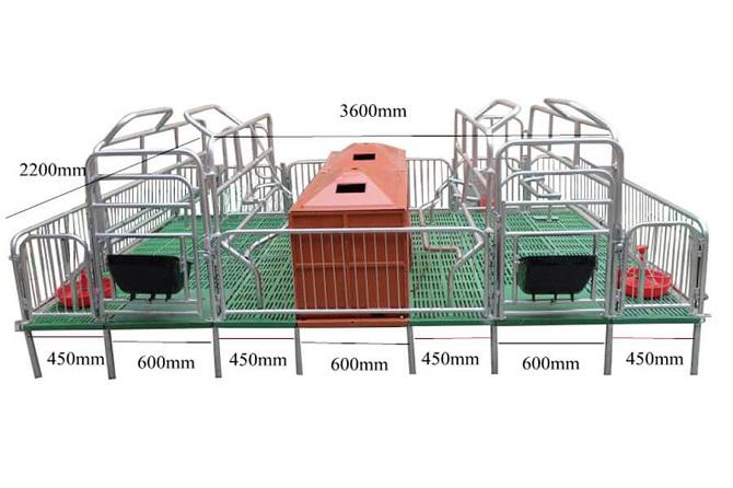 Pig Farrowing Crate