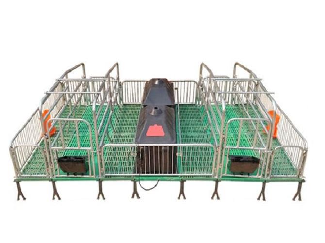 pig steel stall