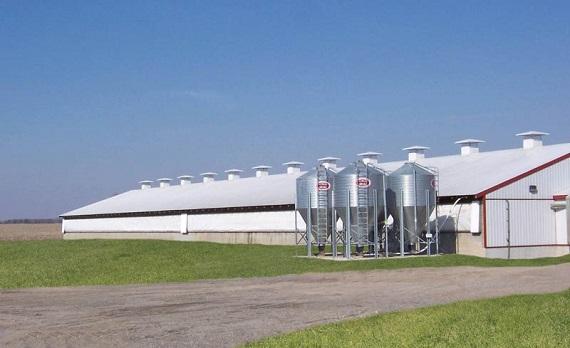 Swine Industry Ventilation Panel Systems