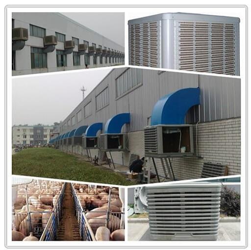 pig farming cooling