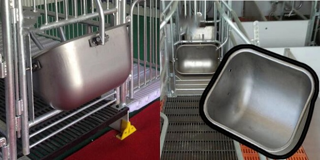 using of stainless steel sow feeder